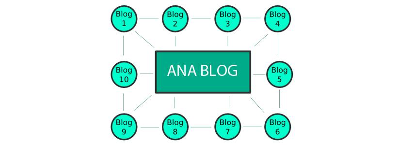 paravan-blog-oluşturma