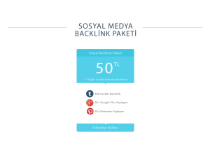 backlink paketi